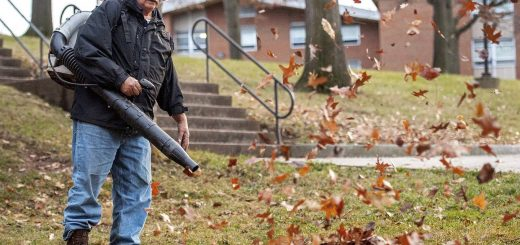 Are Leaf Blowers Hazardous to Your Health?